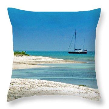 Paradise Found Throw Pillow by Debbi Granruth