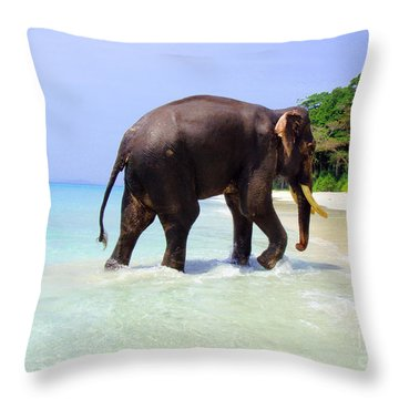 Paradise Found Throw Pillow by Jacqueline Russell