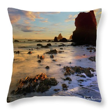 Paradise On Earth Throw Pillow by Tim Fitzharris
