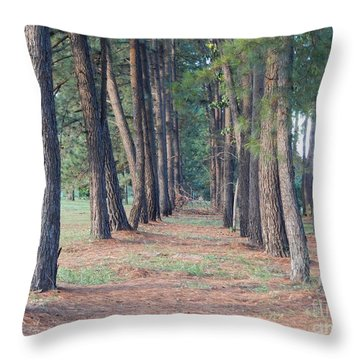 Throw Pillow featuring the photograph Paradise Way by Beto Machado
