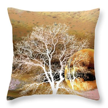 Throw Pillow featuring the photograph Parallel Worlds by Joyce Dickens