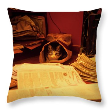 Parcel Cat Throw Pillow