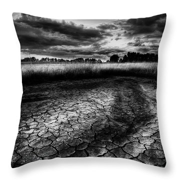Parched Prairie Throw Pillow by Dan Jurak