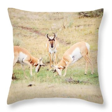 Parent Watching Sparring  Throw Pillow