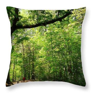 Paris Mountain State Park South Carolina Throw Pillow by Bellesouth Studio