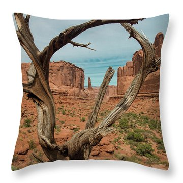 Throw Pillow featuring the photograph Park Avenue by Gary Lengyel