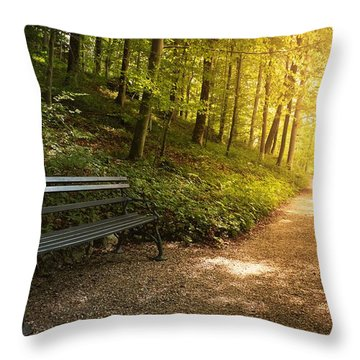 Throw Pillow featuring the photograph Park Bench In Fall by Chevy Fleet
