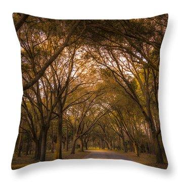 Park Overhang Throw Pillow