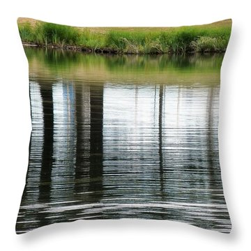 Park Reflections Throw Pillow