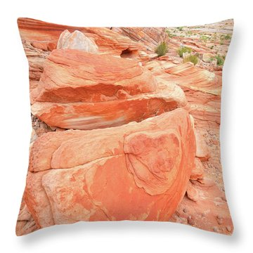 Throw Pillow featuring the photograph Park Road View In Valley Of Fire by Ray Mathis