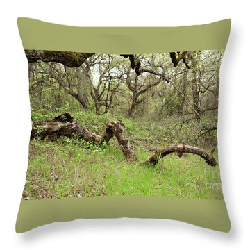 Park Serpent Throw Pillow by Carol Lynn Coronios