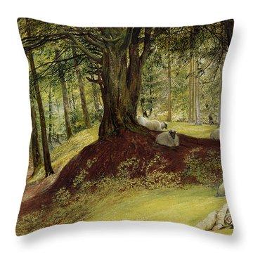 Parkhurst Woods Throw Pillow by Richard Redgrave