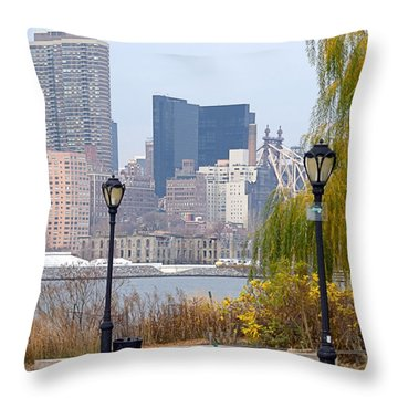 Parkview Throw Pillow