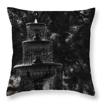 Parkview Throw Pillow