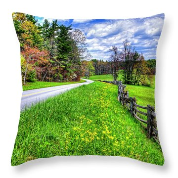Parkway Spring Throw Pillow by Dale R Carlson