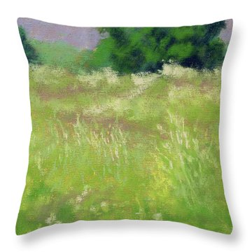 Parkway Spring Throw Pillow