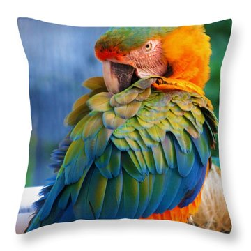 Parrot 2 Throw Pillow