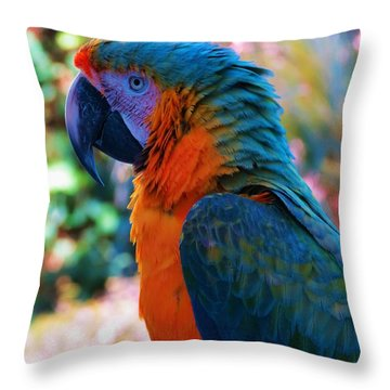 Parrot 4 Throw Pillow