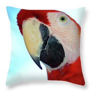 Parrot Head, But Not Necessarily A Fan  Throw Pillow