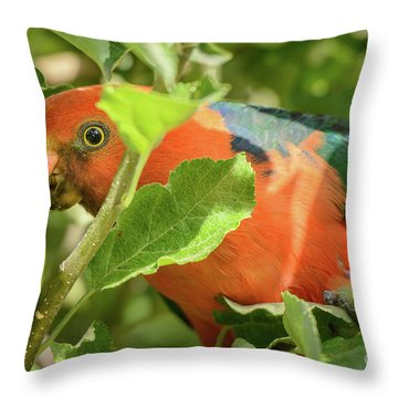 Throw Pillow featuring the photograph  Parrot In Apple Tree by Werner Padarin
