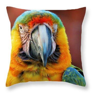 Parrot Portrait Throw Pillow