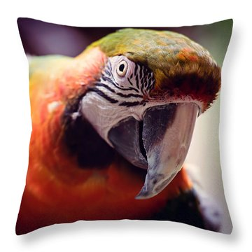 Parrot Selfie Throw Pillow