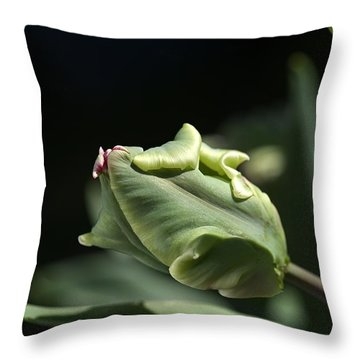 Parrot Tulip Bud Throw Pillow