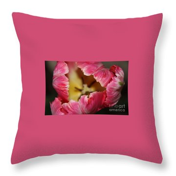 Throw Pillow featuring the photograph Parrot Tulip by Jolanta Anna Karolska