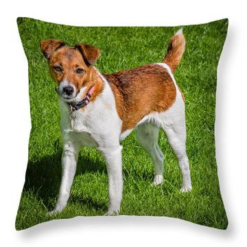 Parson Jack Russell Throw Pillow