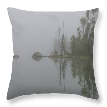 Part Of The Mystery Throw Pillow