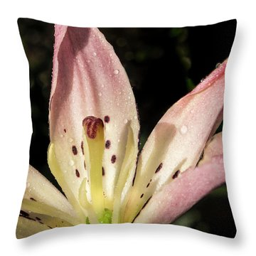 Throw Pillow featuring the photograph Partitioned Lily by Jean Noren