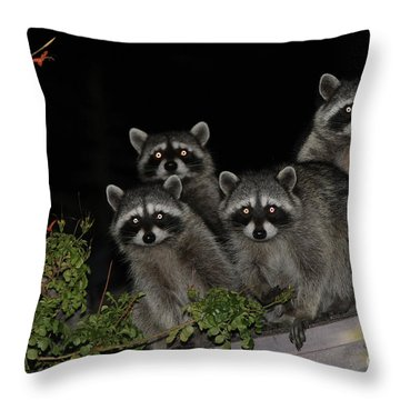 Party Of Five On The Roof Top Throw Pillow by Nina Prommer