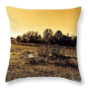 Past It's Time Throw Pillow