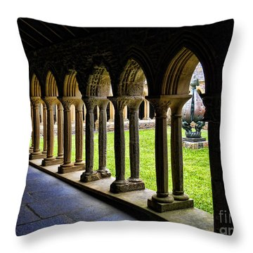 Passage To The Ancient Throw Pillow