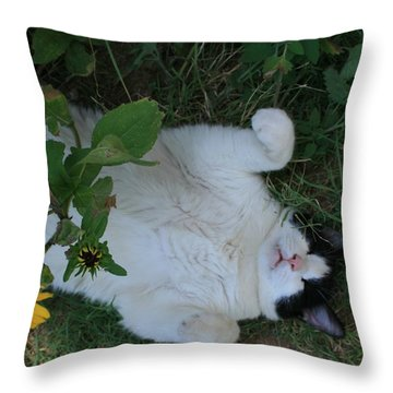 Passed Out Under The Daisies Throw Pillow by Marna Edwards Flavell