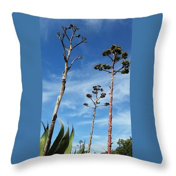 Passing Centuries Throw Pillow