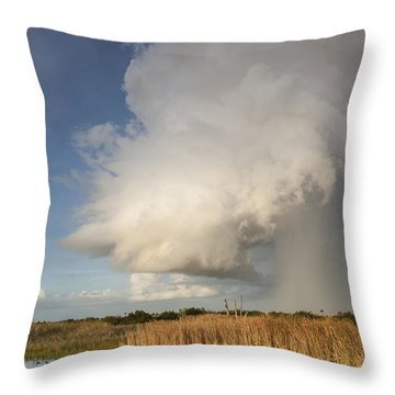 Passing Late Afternoon Rain Shower Throw Pillow
