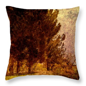 Passing  Throw Pillow