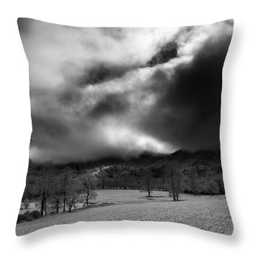 Passing Snow In North Carolina In Black And White Throw Pillow by Greg Mimbs