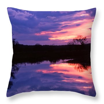 Passing Storm Throw Pillow by Michael Hubley