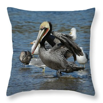 Throw Pillow featuring the photograph Passing Through by Fraida Gutovich