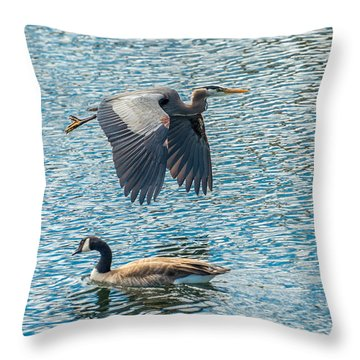 Passing Waterfowl Throw Pillow