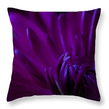 Passion Throw Pillow by Charles Dobbs