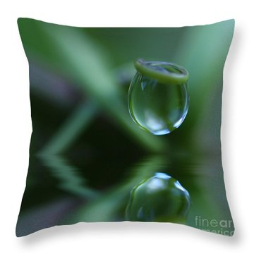 Passion Drop Throw Pillow
