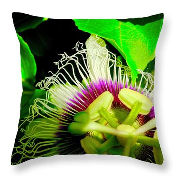 Passion Flower 2 Reflecting Throw Pillow
