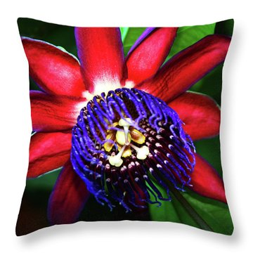 Throw Pillow featuring the photograph Passion Flower by Anthony Jones