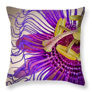 Throw Pillow featuring the photograph Passion Flower Squared by TK Goforth