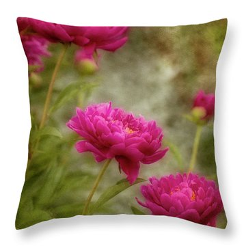 Passion For Pink Throw Pillow