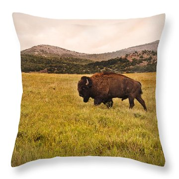Past His Prime Throw Pillow by Tamyra Ayles