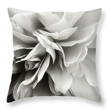 Throw Pillow featuring the photograph Past Lives by Darlene Kwiatkowski